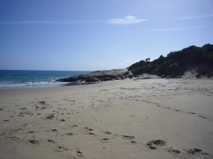 Adams Beach Bridport
