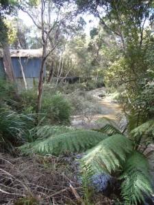 Brid River, Bridport Tasmania