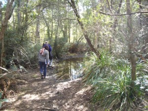 CVA Team assessing the Bridport Walking Trail, Bridport Tasmania