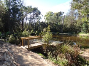 Discovery Deck at Settling Pond, Bridport Walking Track