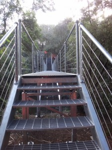 Footbridge, Bridport Walking Track