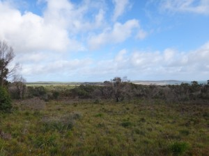 Emu Plains and Adams Beach, Bridport Tasmania