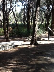 River-Forest, Bridport Walking Track