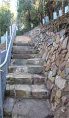 Stone Steps above Bridge, Bridport Walking Track