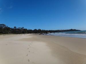 Adams Beach
