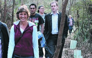 River-Forest Track Opening