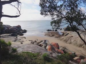 mermaids beach bridport